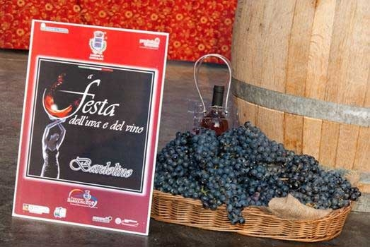 Bardolino Wine and Grapes Festival - Photo by: www.bardolinotop.it