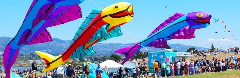 Berkeley Kite Festival & West Coast Kite Championships - Photo by: www.highlinekites.com