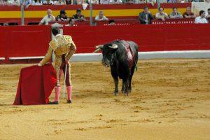 Bullfighting - Photo by: jxnhunter