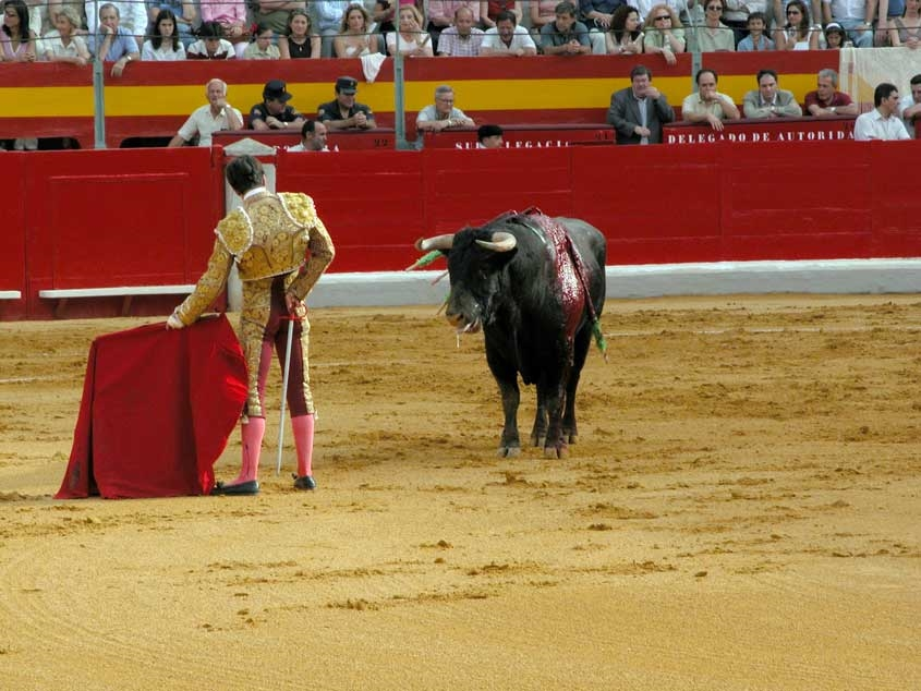 Bullfighting - Photo by: jxnhunter
