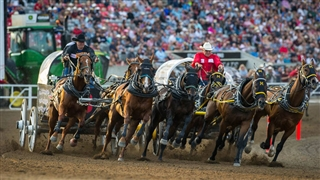Calgary Stampede 2019 Canada Dates Venues Amp Tickets