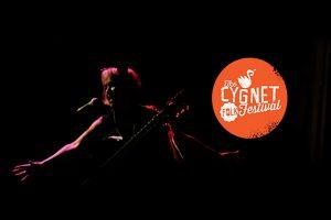 Cygnet Folk Festival poster - Photo by: www.cygnetfolkfestival.org