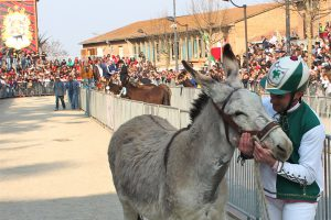 Donkey-palio in Torrita di Siena - Photo courtesy of Associazione Sagra San Giuseppe