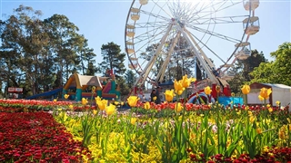Floriade - Commonwealth Park