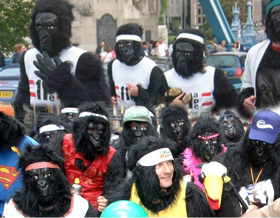 Great Gorilla Run / London UK - Photo by: www.greatgorillarun.org