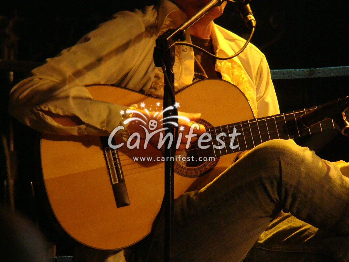 Guitar Player - CarniFest Online Photo © All Rights Reserved