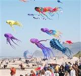 Long Beach Wa Kite Festival  Dates