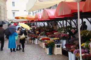 Ljubljana Central Market - CarniFest Online Photo © All Rights Reserved