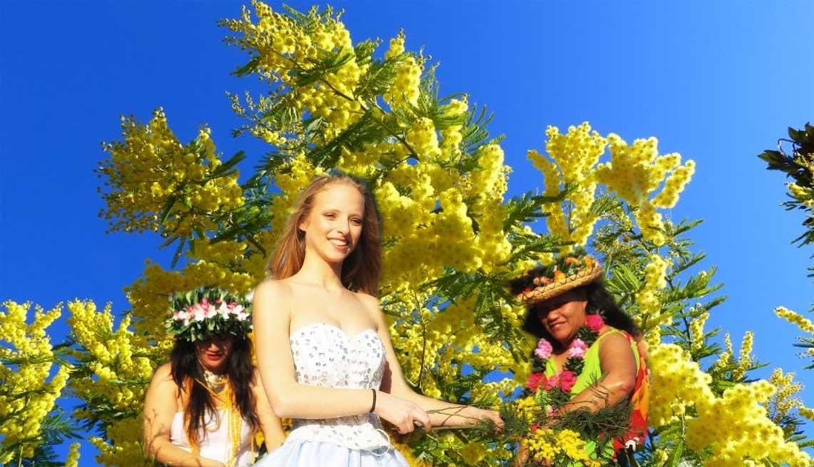Mimosa Festival in Mandelieu la Nnapoule - Photo by: www.mandelieu.com