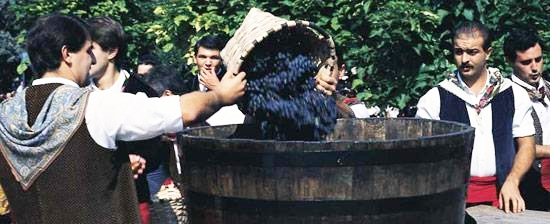 Rioja Wine Harvest Festival - Photo by: www.spain.info