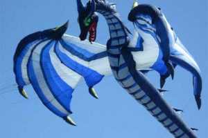 Washington State International Kite Festival - Photo by: http://kitefestival.com